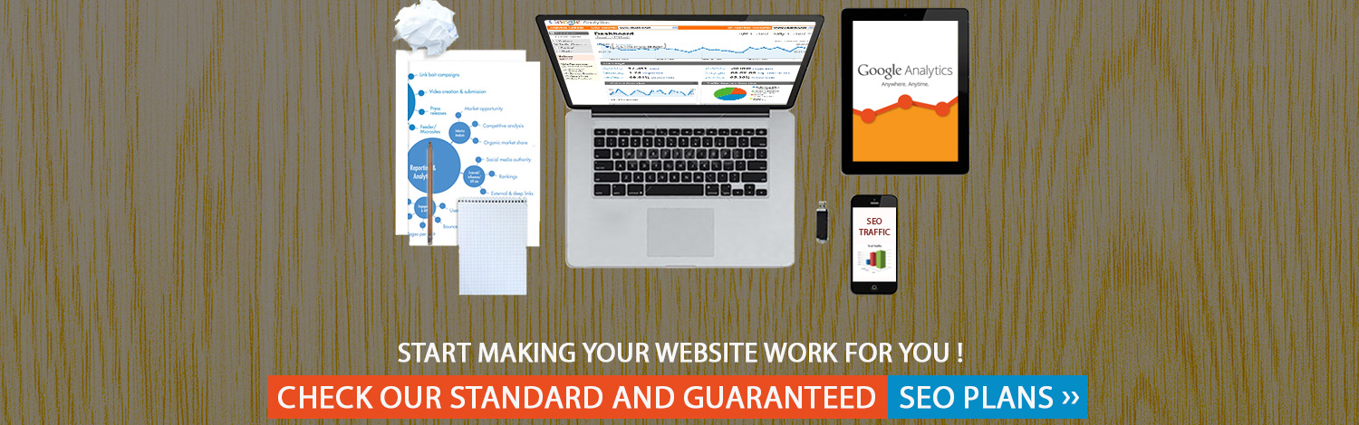 Start Making Your Website Work For You ! Check Our Standard and Guaranteed SEO Plans >>